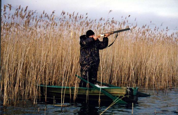 Правила охоты на водоплавающую дичь