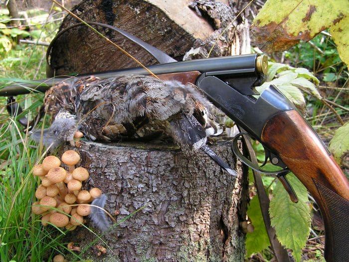 Охотничье ружье ИЖ 18