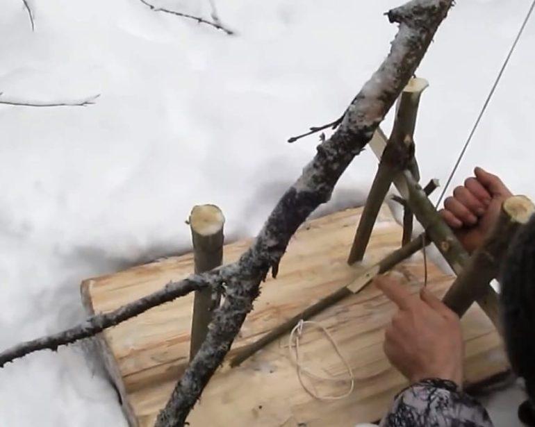 охота на зайцев зимой петлями